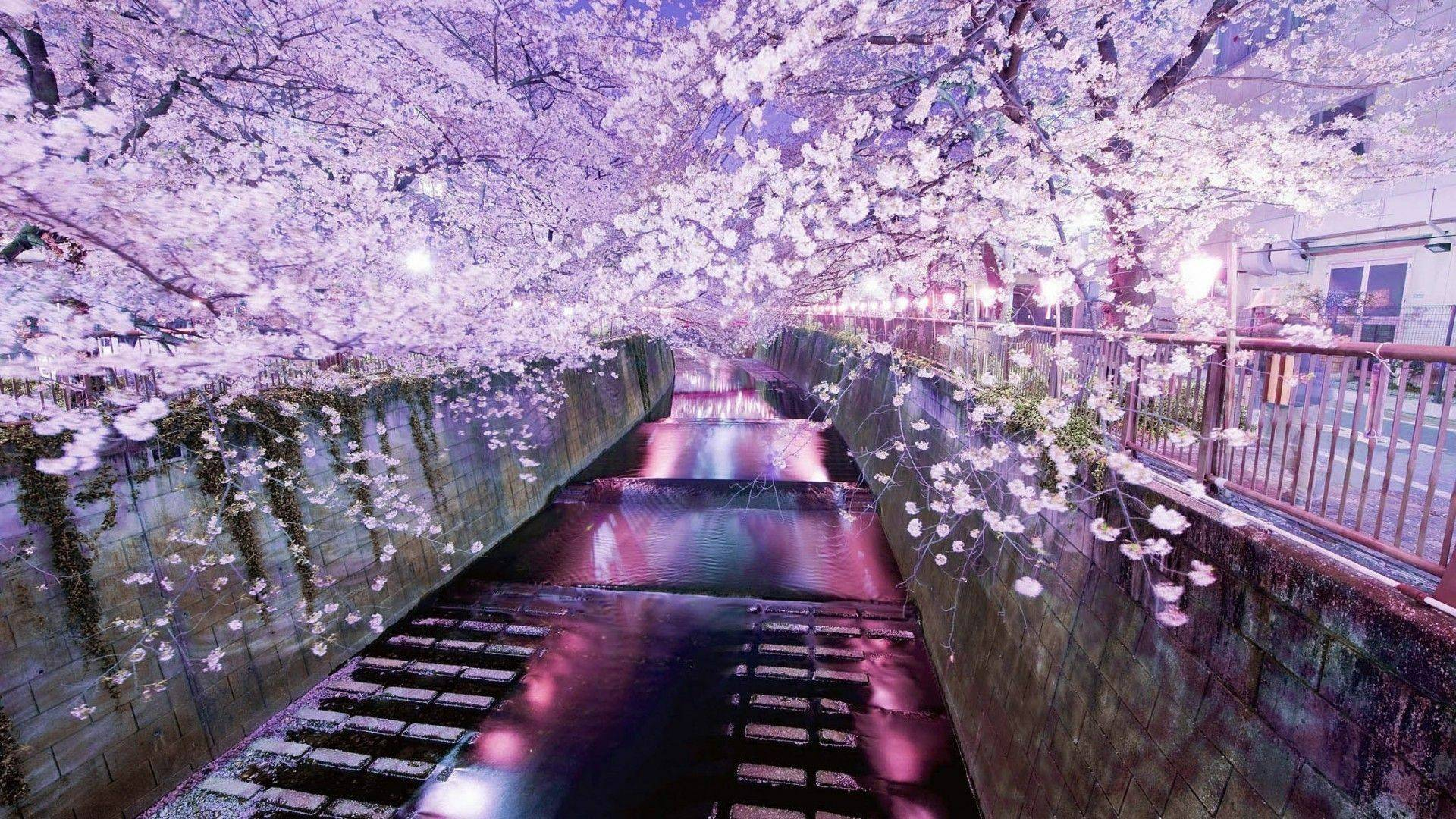26 The Aesthetics Of Japan Desktop Wallpaper Download